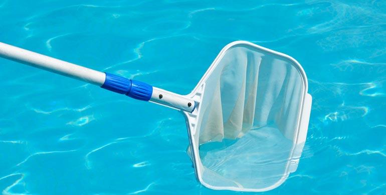 ليوناردودا حمام السباحة الحلاق ادوات تنظيف المسبح Dsvdedommel Com